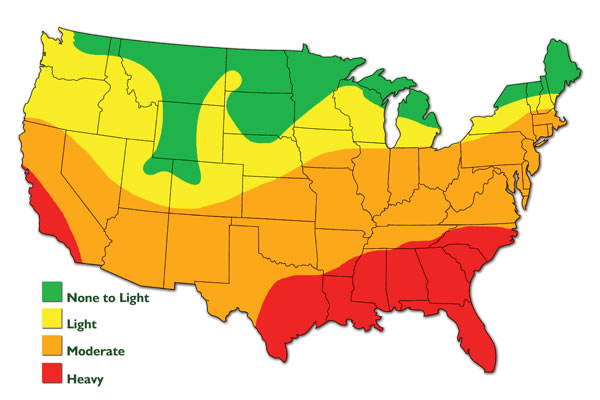 Termite Distribution In USA State By State Know If You Are Moving - Us termite map